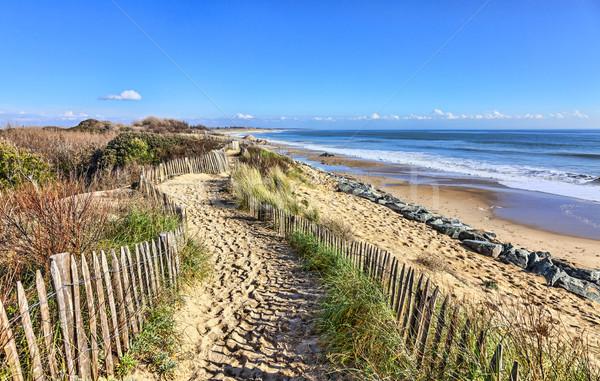 Footpath on the Atlantic Dune in Brittany Stock photo © RazvanPhotography