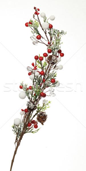 Tél dekoráció kép díszített kicsi ág Stock fotó © RazvanPhotography