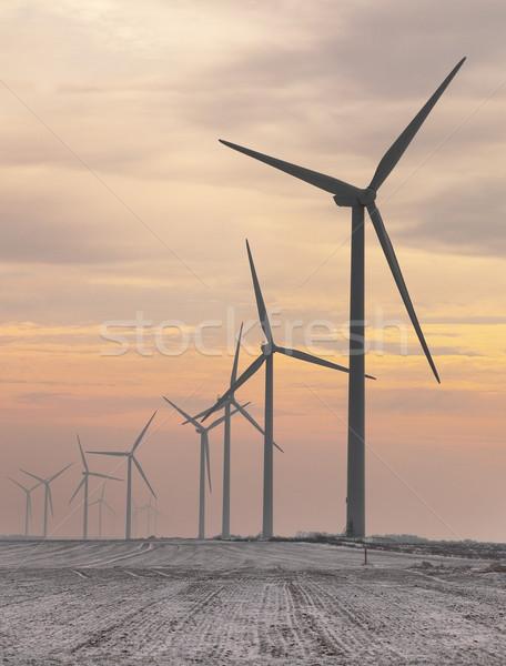 ストックフォト: 夕暮れ · 画像 · 霧の · フィールド · 空