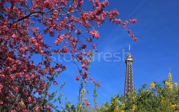 Parijzenaar voorjaar detail top eiffel tour Stockfoto © RazvanPhotography