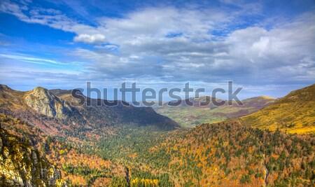 Beautiful Autumn Valley Stock photo © RazvanPhotography