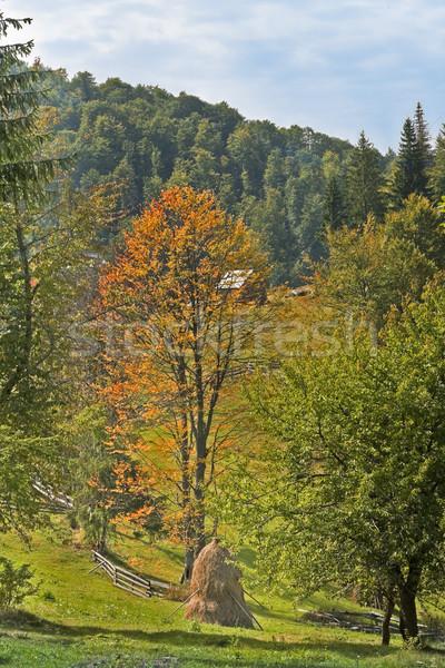 Presto autunno panorama posizione tradizionale paese Foto d'archivio © RazvanPhotography