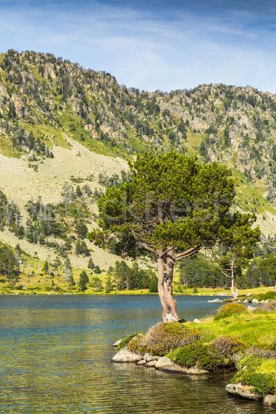 Landscape in Pyrenees Mountains Stock photo © RazvanPhotography
