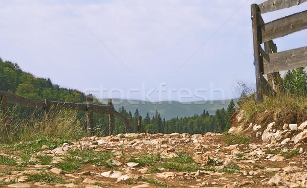 Mountain path Stock photo © RazvanPhotography