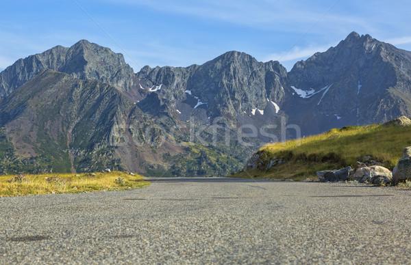 Carretera montanas escénico árbol forestales verano Foto stock © RazvanPhotography