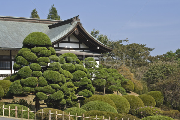 Japanese garden and temple Stock photo © RazvanPhotography