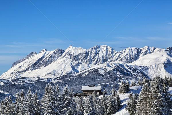 Chalet in Winter Stock photo © RazvanPhotography