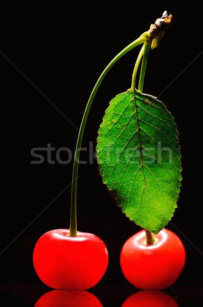 Iki kiraz yalıtılmış siyah gıda meyve Stok fotoğraf © razvanphotos