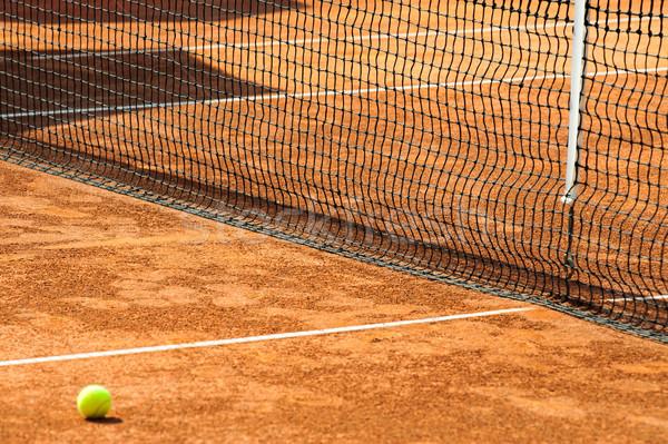 Tenis net spor alan yeşil Stok fotoğraf © razvanphotos