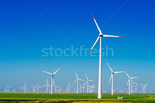 green meadow with Wind turbines generating electricity Stock photo © razvanphotos