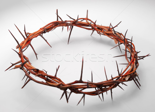 view of branches of thorns woven into a crown depicting the cruc Stock photo © razvanphotos