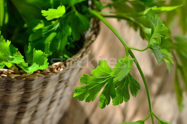 Verde orgânico salsa mesa de madeira folha cozinha Foto stock © razvanphotos