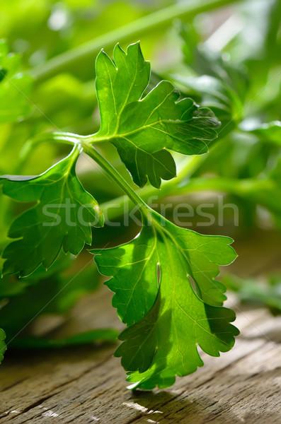 Maydanoz bitki gıda yeşil sebze nesne Stok fotoğraf © razvanphotos