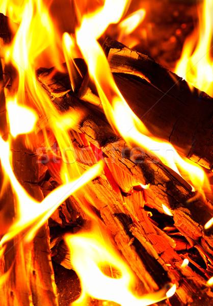 fire Stock photo © razvanphotos