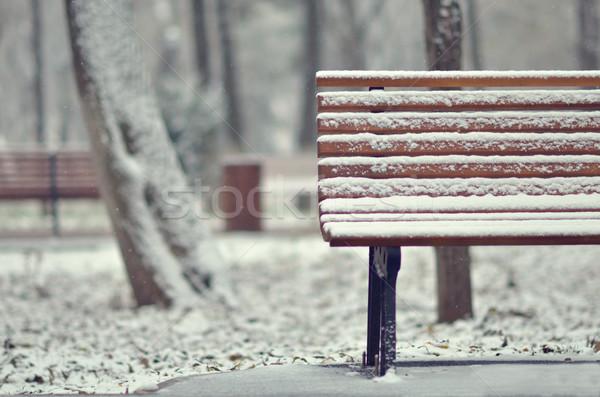 Basit ahşap bank beyaz manzara ağaç Stok fotoğraf © razvanphotos