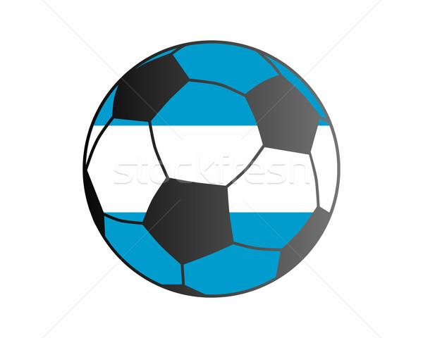 Bandeira Argentina futebol futebol Foto stock © rbiedermann