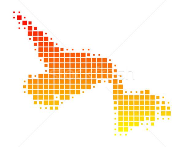 Pokaż nowa fundlandia labrador wzór placu Kanada Zdjęcia stock © rbiedermann