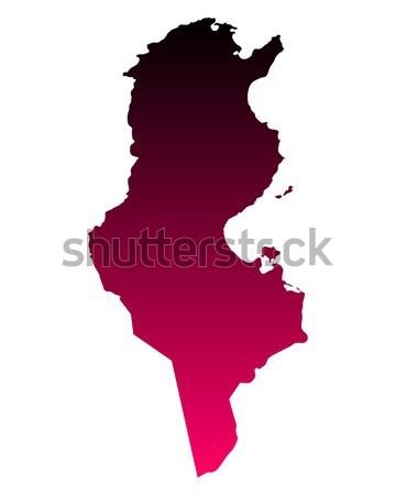 Mapa rosa vetor isolado ilustração geografia Foto stock © rbiedermann