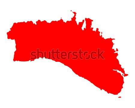 Carte Afrique du Sud rouge vecteur isolé illustration Photo stock © rbiedermann