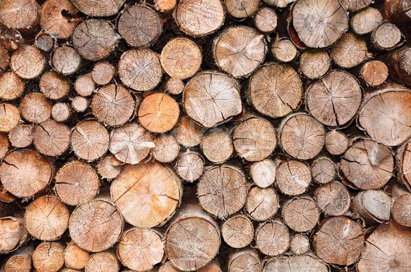 Wystroić drewna lasu tle drewna Zdjęcia stock © rbiedermann