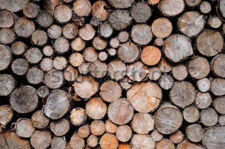 Abete rosso legno foresta sfondo legno Foto d'archivio © rbiedermann