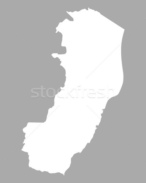 карта вектора изолированный серый серый география Сток-фото © rbiedermann
