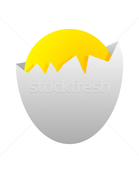 Foto stock: Huevo · pollo · shell · blanco · roto