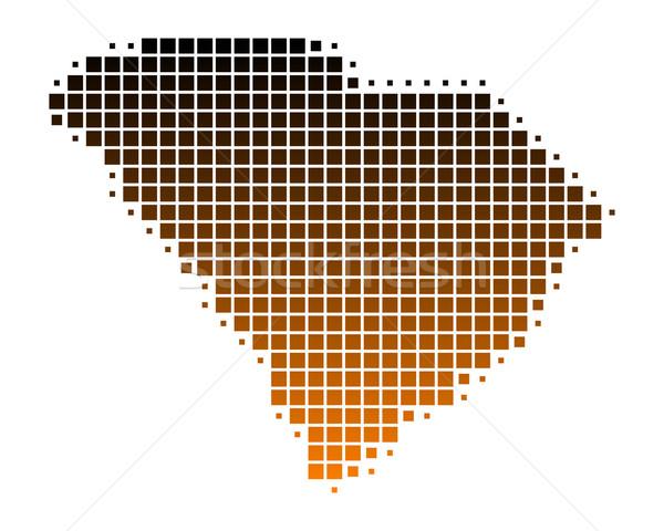 Kaart South Carolina patroon amerika vierkante illustratie Stockfoto © rbiedermann