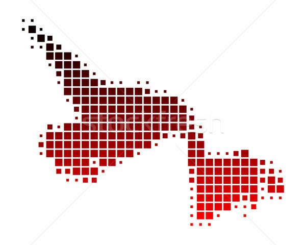 Pokaż nowa fundlandia labrador czerwony wzór placu Zdjęcia stock © rbiedermann