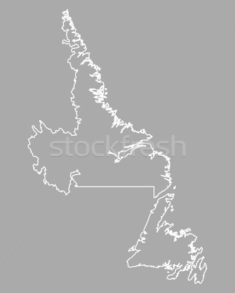 Pokaż nowa fundlandia labrador Kanada odizolowany ilustracja Zdjęcia stock © rbiedermann