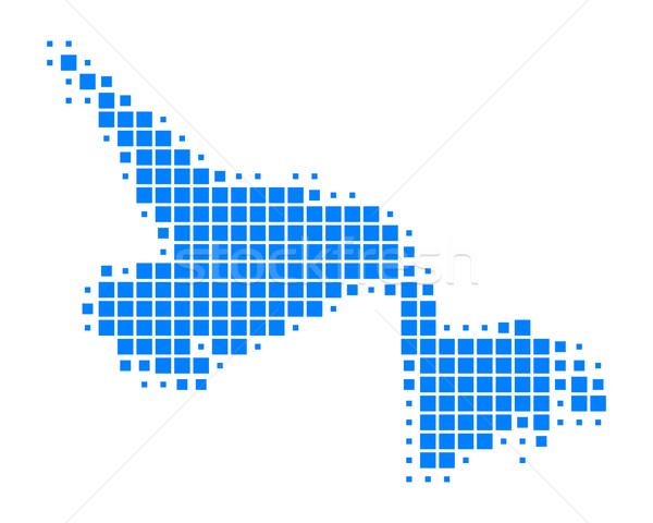 Pokaż nowa fundlandia labrador niebieski podróży wzór Zdjęcia stock © rbiedermann