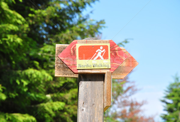 Nordic walking sign Stock photo © rbiedermann
