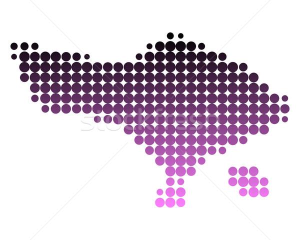 Mapa bali ilha padrão rosa círculo Foto stock © rbiedermann