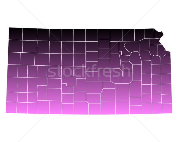 Térkép rózsaszín USA vektor izolált illusztráció Stock fotó © rbiedermann