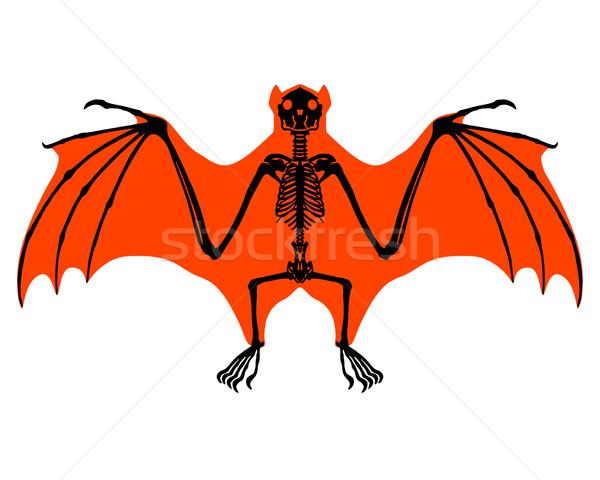Bat esqueleto natureza preto branco asas Foto stock © rbiedermann