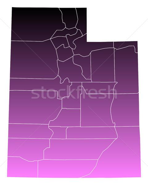 Térkép háttér rózsaszín USA vektor izolált Stock fotó © rbiedermann