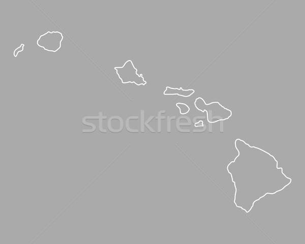 地図 ハワイ 米国 孤立した 実例 グレー ストックフォト © rbiedermann