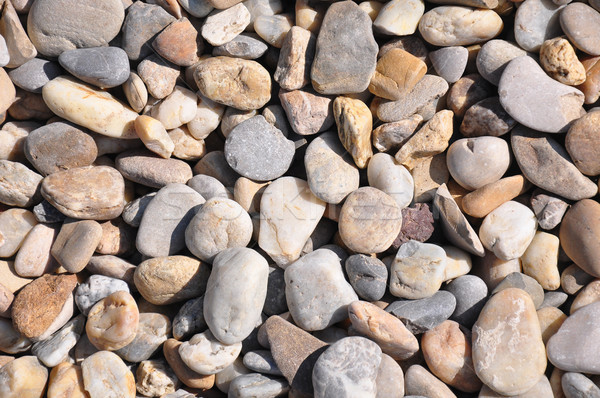 Shingle background Stock photo © rbiedermann
