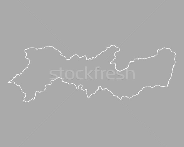 карта вектора Бразилия изолированный иллюстрация серый Сток-фото © rbiedermann
