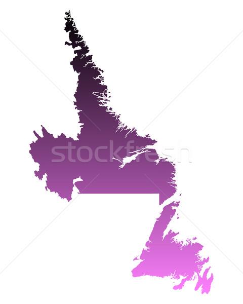 地図 ニューファンドランド島 ラブラドル ピンク ベクトル カナダ ストックフォト © rbiedermann