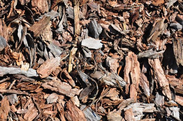 Bark mulch Stock photo © rbiedermann