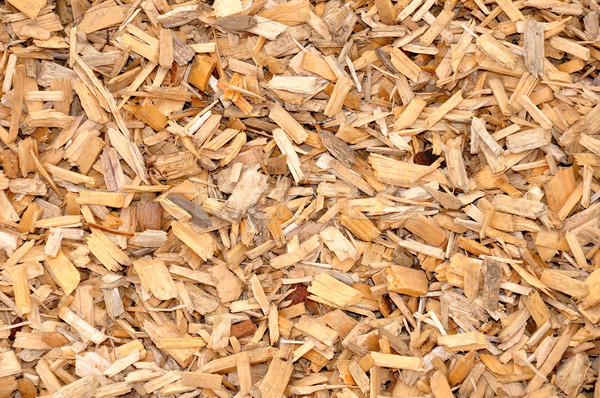 Wood chips Stock photo © rbiedermann