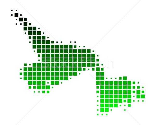 Pokaż nowa fundlandia labrador zielone wzór placu Zdjęcia stock © rbiedermann