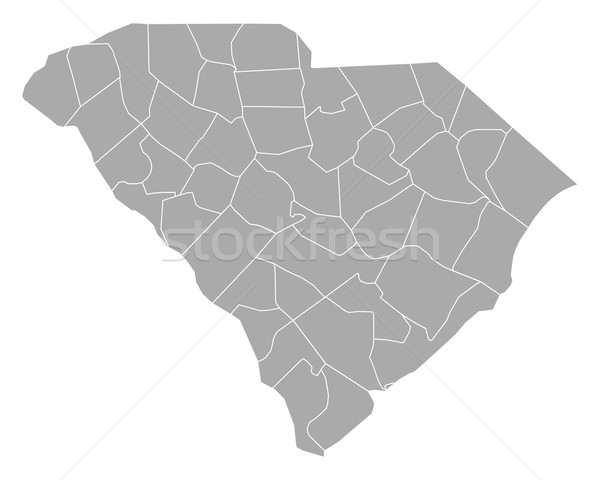 Kaart South Carolina achtergrond lijn USA vector Stockfoto © rbiedermann