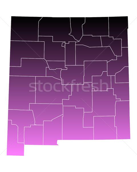Kaart nieuwe roze usa vector geïsoleerd Stockfoto © rbiedermann