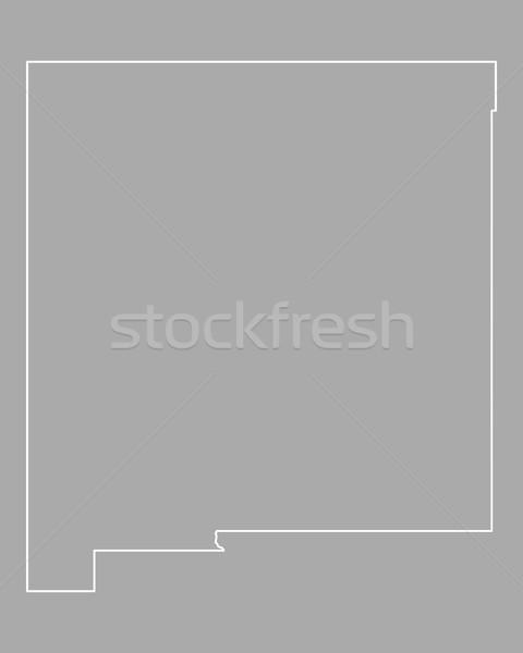 Kaart New Mexico USA vector Mexico geïsoleerd Stockfoto © rbiedermann