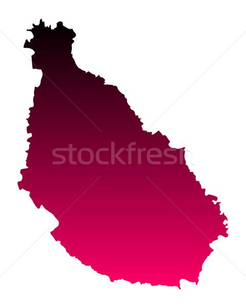 Kaart Santiago achtergrond roze lijn vector Stockfoto © rbiedermann