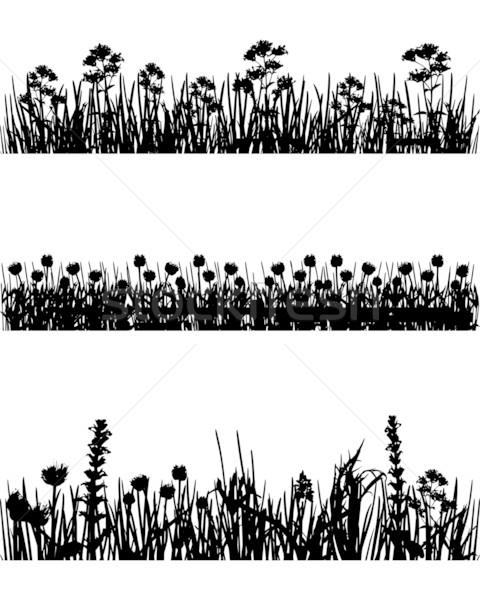 ストックフォト: 草原 · シルエット · 花 · 草 · 自然 · 背景