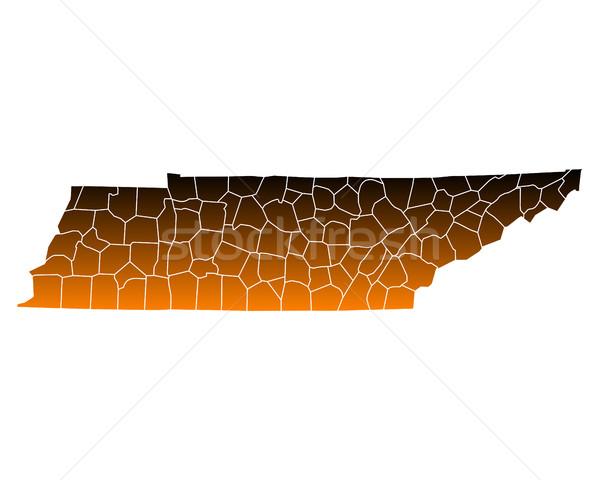 Pokaż USA wektora odizolowany ilustracja brązowy Zdjęcia stock © rbiedermann