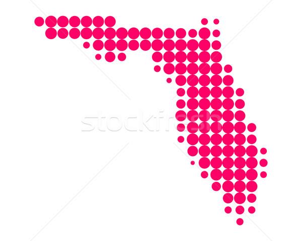 Térkép Florida minta Amerika lila kör Stock fotó © rbiedermann